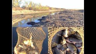 рыбалка в Волго Ахтубинской пойме.