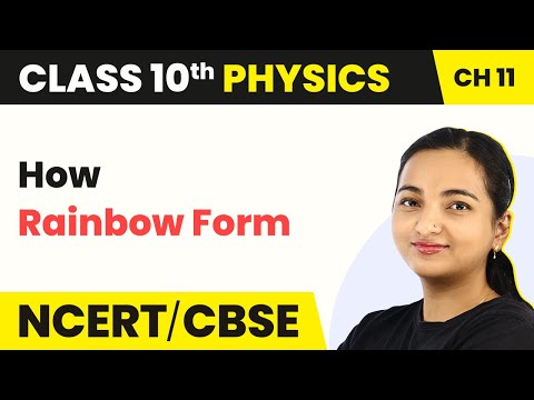 How Rainbow Form - The Human Eye and the Colorful World | Class 10 Physics