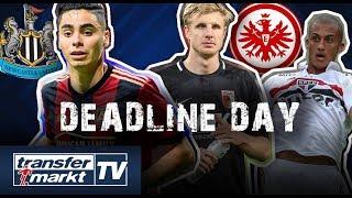 Deadline Day-Ticker #4: Almirón zu Newcastle - SGE stärkt Defensive | TRANSFERMARKT