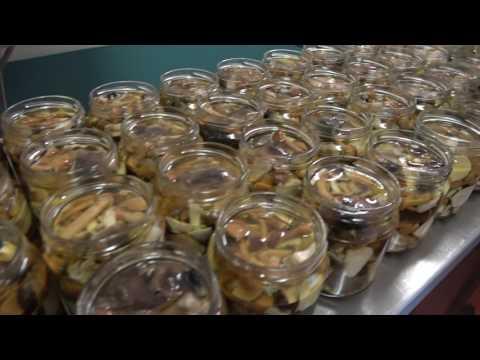 Ricetta funghi misti in olio d'oliva della Bottega del Fungo
