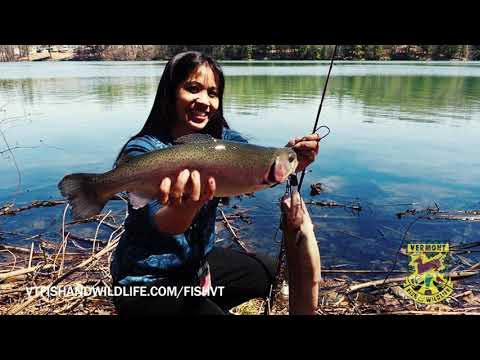 Excellent Fishing Opportunities In Vermont