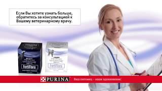 Пробиотическая добавка  FortiFlora (ФортиФлора)