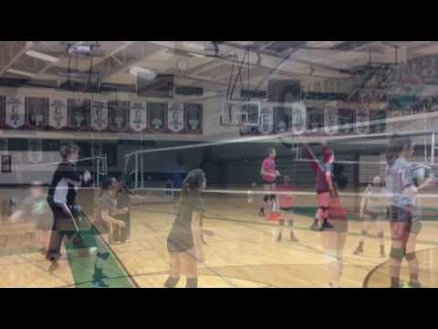 Tree Roots Winter Volleyball Clinics at Clare High School