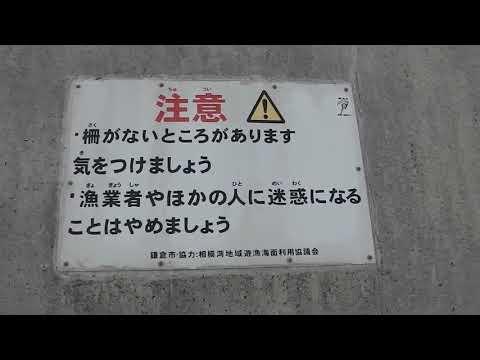 腰越港釣り場ガイド20190217