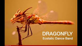 Dragonfly Ecstatic Dance Band - Live flow March 2021 @ Church of Intuitive Music