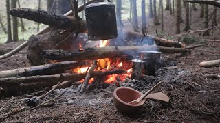 Bushcraft Camp   Raised Beds & Shelter   Special Guest