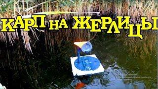 ЛОВЛЯ КАРПА на ЗИМНИЕ ЖЕРЛИЦЫ с ЛОДКИ