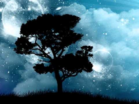 Клип Nine Black Alps - Pocket Full Of Stars