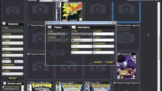 Metre des code sur roms Gameboy ou DS