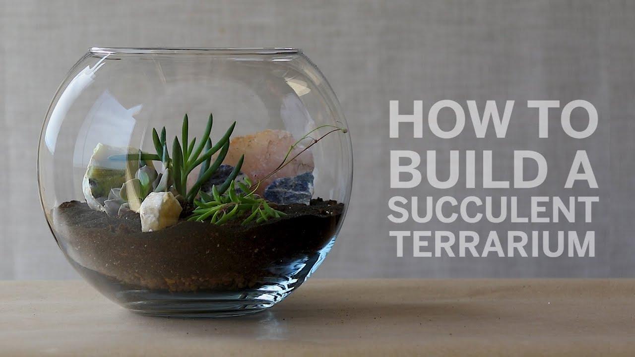 How To Build A Succulent Terrarium Youtube