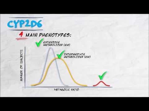 The Pharmacogenetics Series - CYP2D6
