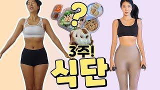 눈바디혁명? 3주 다이어트 식단 총정리. feat.일반식 , 닭가슴살x