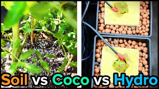 Soil vs Hydro vs Coco Blend for Indoor Gardening and Hydroponics