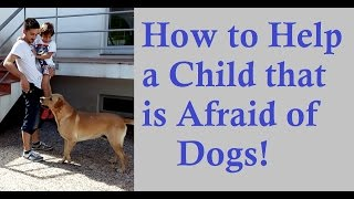How To Help A Child That Is Afraid Of Dogs