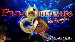 Primordiales de Sinaloa - Los 4 Gallos (En Vivo) (2016)