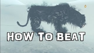 Dark Souls 2 Lost Crown of The Ivory King DLC - How To Beat The Kings Pets Lud & Zallen