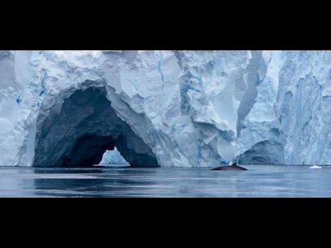 Misterija Antarktika ŠOKANTNO