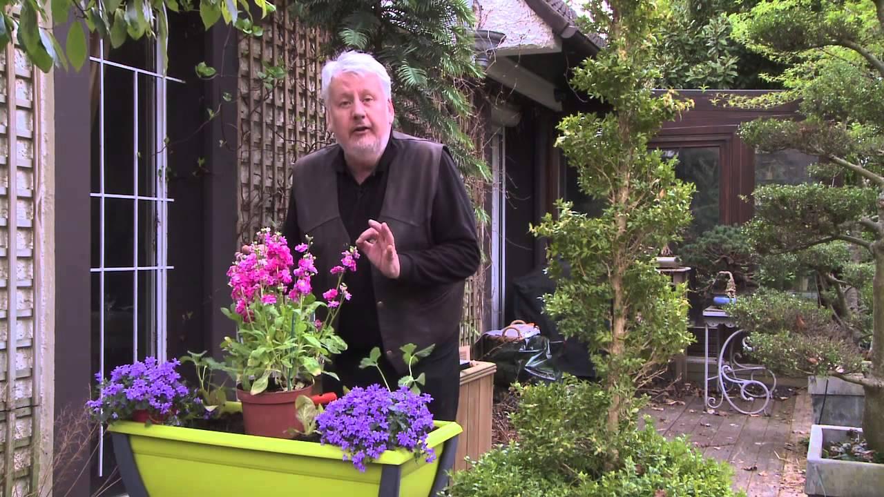 comment composer une jardiniere fleurie de printemps