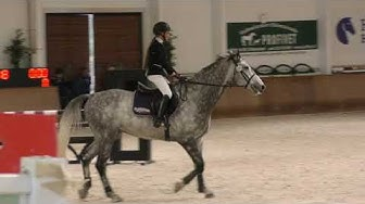 Kunnamo Leona & C-Eckhardt 80cm @ Riders Inn 11.-12.11.2017