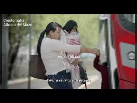 Salario Rosa: Para mujeres en pobreza extrema pero con internet