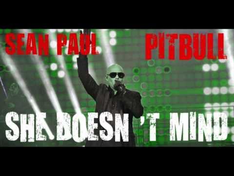 Sean Paul ft Pitbull  She Doesn t mind WORLDWIDE RMX