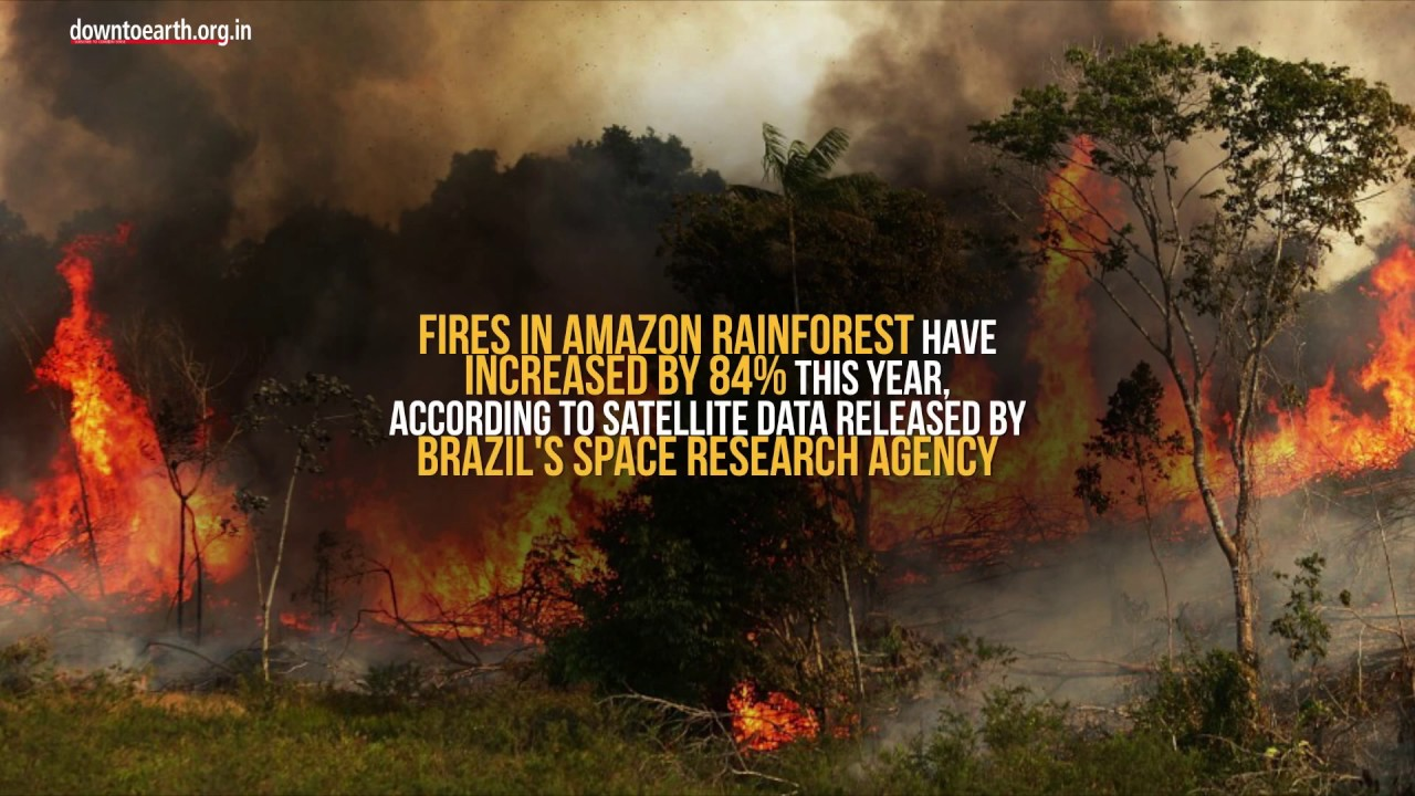 Record Surge In Forest Fires In Amazon Rainforest