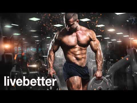 Música emocionante de campeones para entrenar en el gym con intensidad y ganar músculo 2016