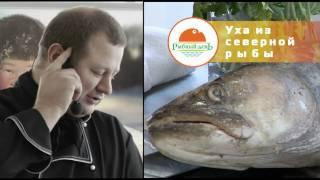 Уха из северной рыбы