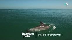 Week-end sur la Côte d'Emeraude - Échappées belles