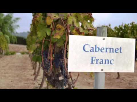 Barcelona private wine tour