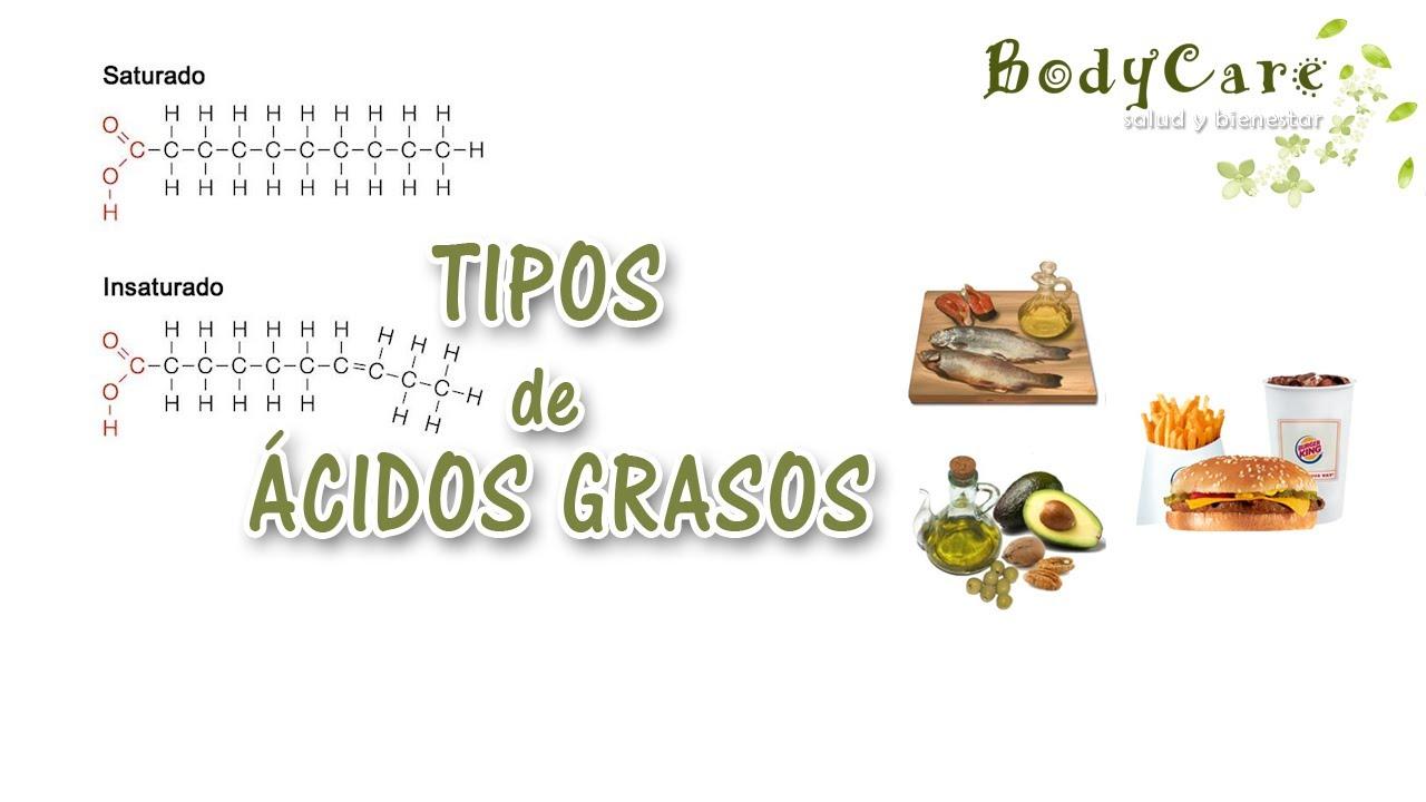 Tipos de cidos grasos youtube for Tipos de viveros pdf