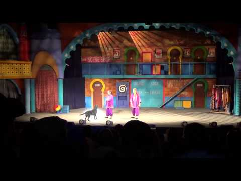 Opening Night Critters At Busch Gardens Tampa Youtube