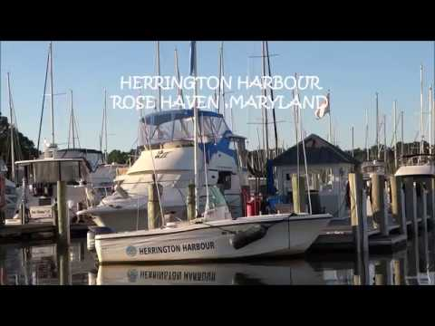 HERRINGTON HARBOUR