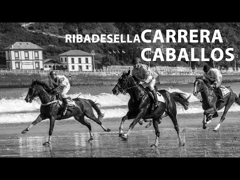 video about Horse race in Santa Marina