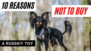 10 reasons NOT to buy a Russian Toy/ Russkiy Toy