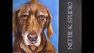 Art Instruction/ Oil painting an Old Dog
