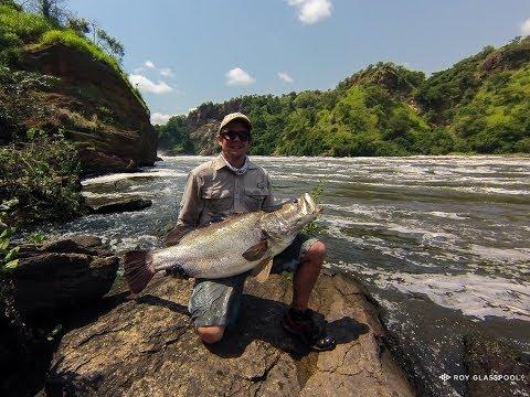 Nile Perch Fishing, Murchison Falls 2017