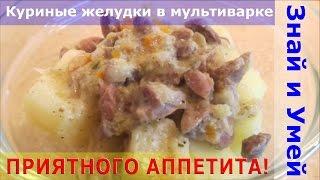 Как приготовить тушеные куриные желудки в мультиварке со сметаной и овощами