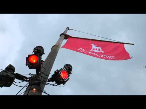 THE PITCH: NETHERLANDS FILM FESTIVAL - JANUARY 2016