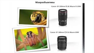 Виды объективов, уроки по фототехнике, оптика, фототехника, оптические оберрации.