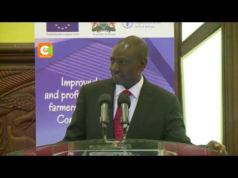 DP Ruto directs NCPB to pay farmers Ksh. 5Bn in April