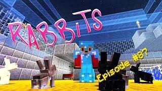 Minecraft - RABBITS - Foxy's Survival World [87]