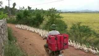 Phong Nha Farmstay, Vietnam  - Part III