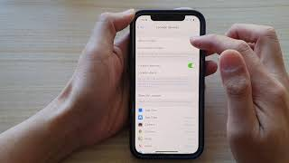 iPhone 12/12 Pro: How to Allow / Don't Allow Changes to Location Services