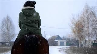 Лошадь | Любовь к лошадям