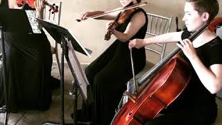 John Legend's All of Me for String Trio