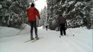 Langlaufen / Cross-country skiing in St. Anton am Arlberg