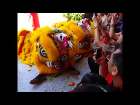 Lion And Dragon Dance in Singapore 2014