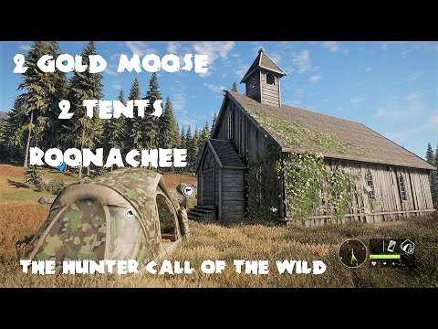 theHunter - Call of the wild - Roonachee Moose