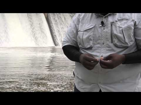 How Deep to Fish for Catfish With a Bobber : How to Catch Catfish
